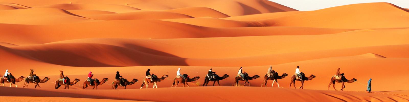 Individuelle Afrikareisen & Afrikaurlaub