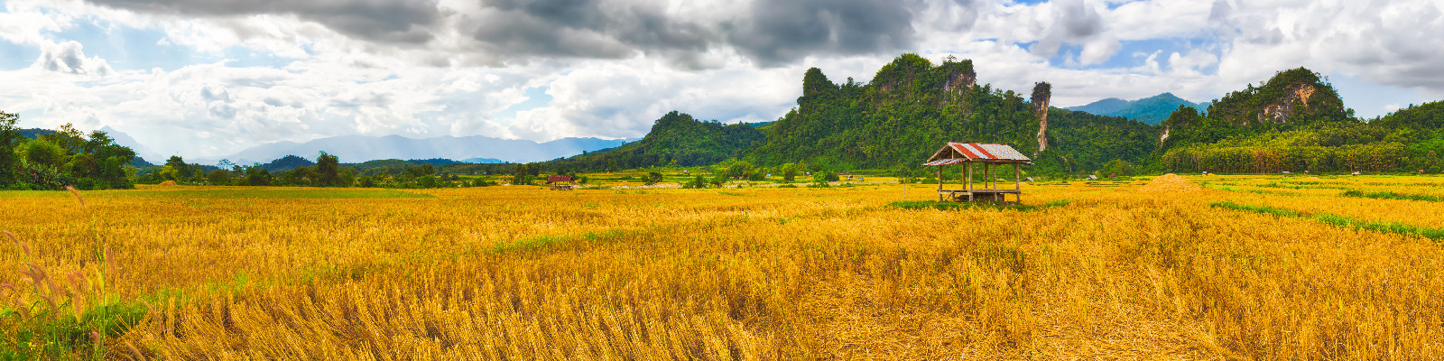 Laos Tours (photo by Adamina)