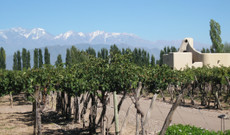 Argentina tours - 10 Day Land of Wines- Chile & Argentina