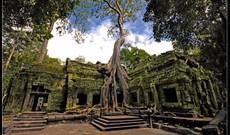 Vietnam tours - Explore the Culture & History of Vietnam and Cambodia