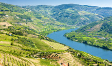 Portugal tours - Discover Portugal's Douro Valley