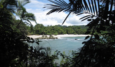 Costa Rica tours - Discover the Green World of Costa Rica!