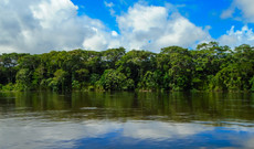 Ecuador tours - 5-Day Ecuadorian Amazon Jungle Tour