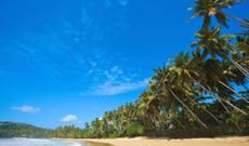 Sri Lanka Rundreisen - Sri Lanka Rundreise | Highlights aus Kultur, Natur und Kolonialzeit