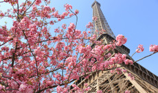 Italy tours - Europe Honeymoon in Rome, Florence and Paris