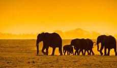 Namibia Rundreisen - 9 - Tage Kurztrip durch Namibia
