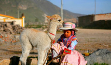 Peru tours - Inca Trail Tour: Machu Picchu, the Sacred Valley & More