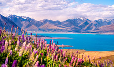 New Zealand tours - 15 Day New Zealand Adventure