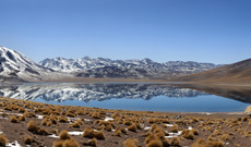 Chile tours - Explore the Wonderous Atacama Desert