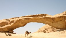 Jordan tours - 12-Day Great Jordan Escape