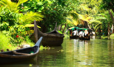 India tours - 11 Day Culture and Nature Tour of South India