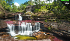 Colombia tours - Caño Cristales: The liquid rainbow