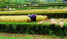 Thailand Rundreisen - Aktiv den Norden Laos erleben