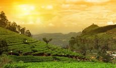 Sri Lanka Rundreisen - Gruppenreise | Fabelhaftes Sri Lanka
