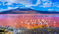 Bolivia tours - Bolivia's South in 7 days
