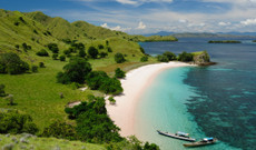 Indonesia tours - 11 Day Flores Exploration