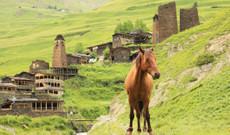 Georgien Rundreisen - Zelten im Großen Kaukasus