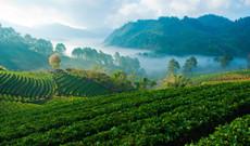 Thailand Rundreisen - 4x4 Adventure im Norden Thailands