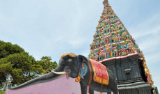 Sri Lanka Rundreisen - Sri Lankas unentdeckter Inselnorden