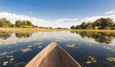 South Africa tours - 9 Day Best of Botswana Tour