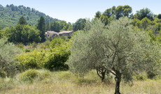 France tours - Easy hiking trails and nice Luberon hotels