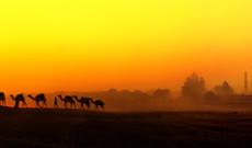 Indien Rundreisen - Gruppenreise: Farbenfrohes Rajasthan und Taj Mahal