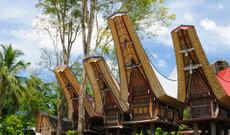 Indonesien Rundreisen - Südsulawesi entdecken