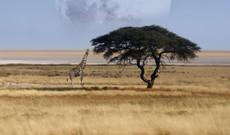Namibia tours - 17 Day Namibia Self Drive Safari