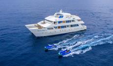 Ecuador Rundreisen - 7 Tage Reise an Bord der Treasure of Galapagos