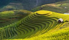 Vietnam Rundreisen - Reise durch die Natur Nordvietnams