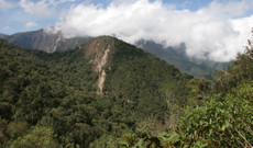 Ecuador tours - The beauty of Ecuador - Bellavista Cloud Forest
