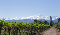 Chile tours - 12 Day Luxury Wine & Cuisine Argentina And Chile Tour