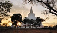Sri Lanka Rundreisen - Klassische Rundreise