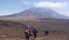 Tanzania tours - 10-Day Kilimanjaro Climb: Lemosho Route