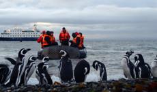 Chile Rundreisen - Stella Australis | Patagonien-Kreuzfahrt nach Feuerland