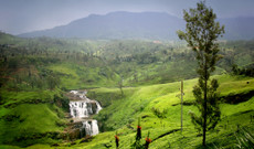 Sri Lanka tours - Sri Lanka in 10 Days