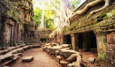 Vietnam Rundreisen - Vietnam-Trip: Höhepunkte in Südvietnam & Kambodscha