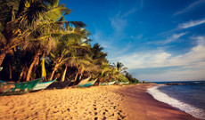 Sri Lanka tours - 14-Day Sri Lanka Adventure