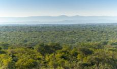 Südafrika Rundreisen - 14 Tage geführte Grand Tour Südafrika & Swaziland