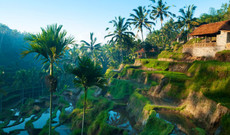 Indonesien Rundreisen - Bali entdecken