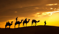 India tours - Highlights of Northern India