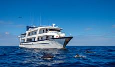 Ecuador Rundreisen - Galapagos-Erlebnisreise an Bord der San Jose