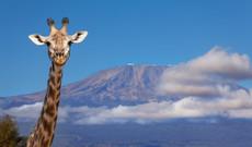 Tansania Rundreisen - Entdeckungsreise Tansania