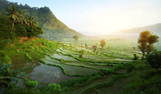 Indonesia tours - 14-Day Best of Java, Bali, and Lombok