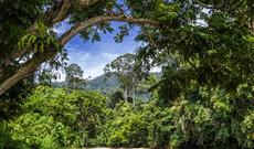 Indonesien Rundreisen - Sumatra entdecken