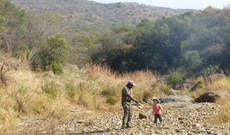 South Africa tours - Family Safari in South Africa