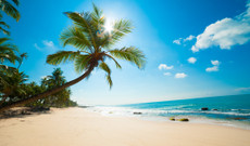 Sri Lanka tours - Discover the Eastern Coast in 9 Days