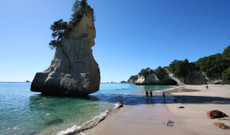 New Zealand tours - 8 Day New Zealand North Island Highlights